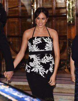 pregnant Meghan Markle attend The Royal Variety Performance 2018