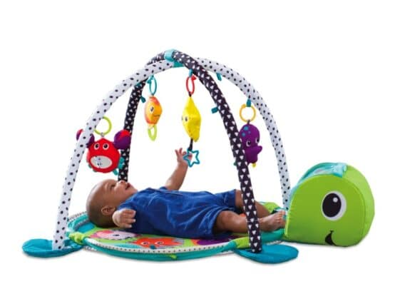 Inglesina Grow-With-Me Activity Gym & Ball Pit