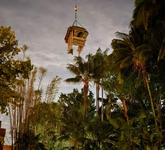 Disney Set To Unveil New Jungle Cruise Experience On July 16 at Magic Kingdom and Disneyland - trader sams