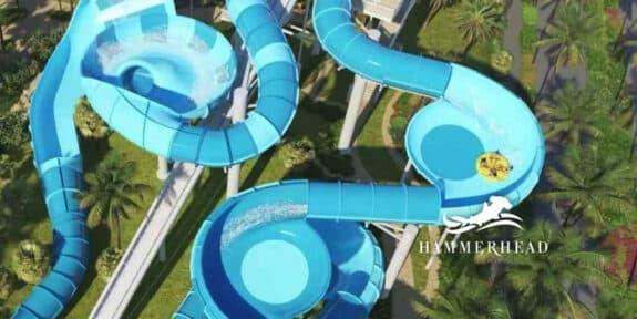 Baha Bay Bahamas hammerhead