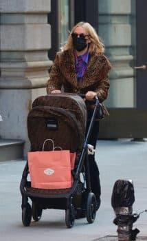 Chloe Sevigny pushes fendi stroller