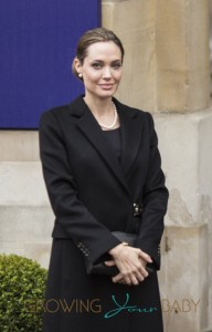 Angelina Jolie and William Hague arrive at the G8 Summit