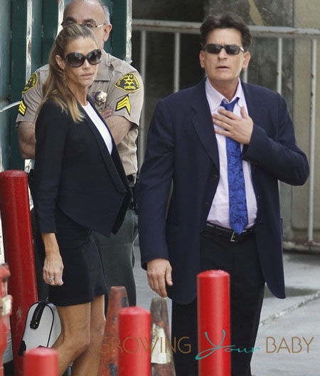 Charlie Sheen and Denise Richards Leave Family Court