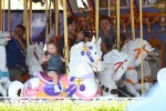 David Beckham on the carousel at Disneyland with his kids Brooklyn and Harper