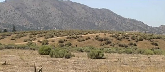 Field where the littlegirl was found