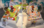 Fisher-Price Comfort CurveTM Bouncer copy