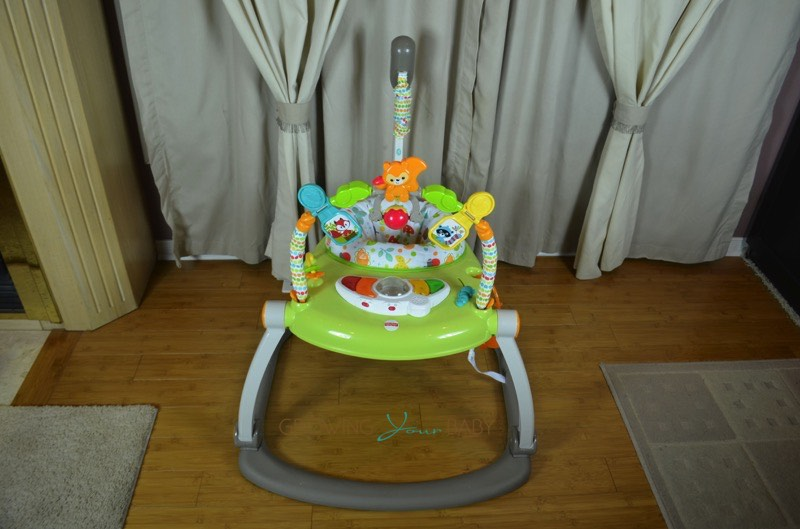 Fisher-price Woodland Friends Spacesaver Jumperoo Baby
