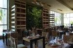 Generations Riviera Maya - chef's market