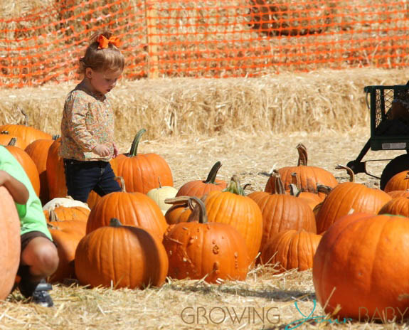Haven Warren at Mr. Bones Pumpkin Patch
