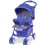 Image of recalled graco Capri Model Stroller (Century)