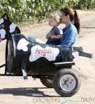 Jennifer Garner & her son Samuel ride the cow train at the pumpkin patch