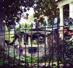 Kourtney Kardashian visits Disneyland
