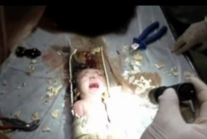 Newborn stuck in Sewer China