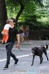 Orlando Bloom and Flynn Bloom Take Dog Sidi Out Through Central Park