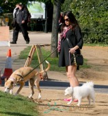 Pregnant Jenna Dewan-Tatum walks her dogs in London
