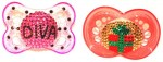 Recalled baby bling pacifiers