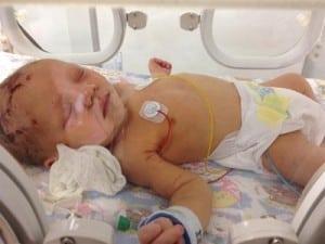 baby Emma Plant