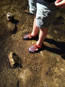 hiking in our Pediped Flex Delmar shoes